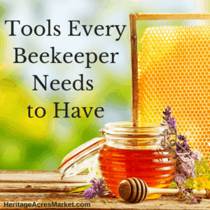 Tools Every Beekeeper Needs To Have 1