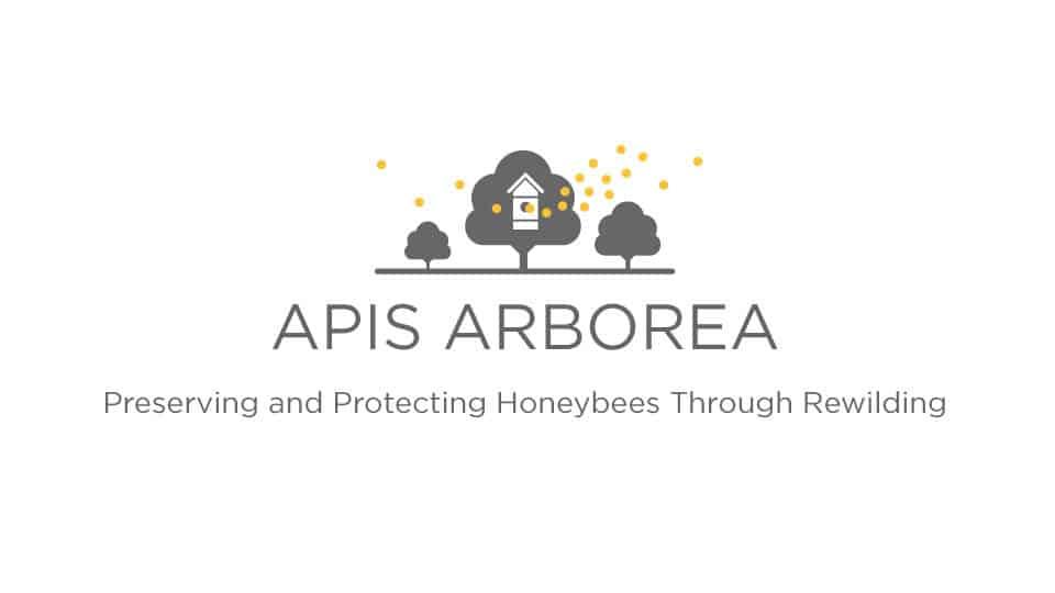 Episode #030: Rewilding Bees To Preserve and Protect ft. Michael Joshin Thiele of Apis Arborea 1