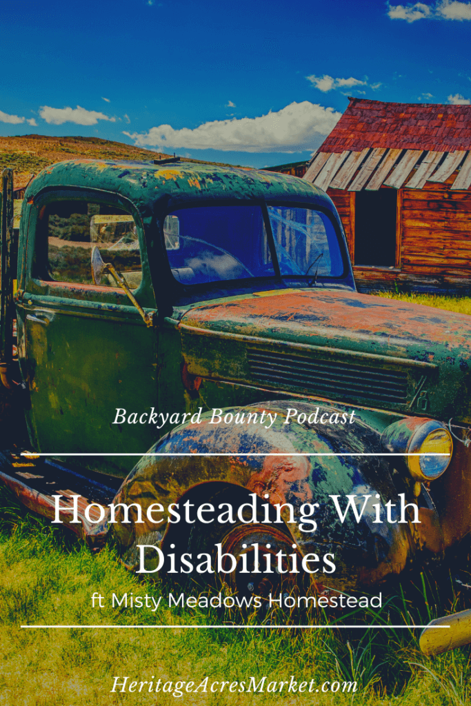 homestead disability
