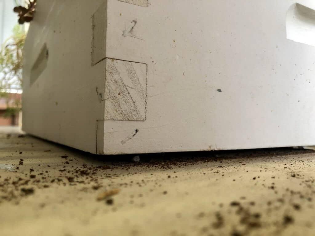 DIY Bee Hive Green Roof 19