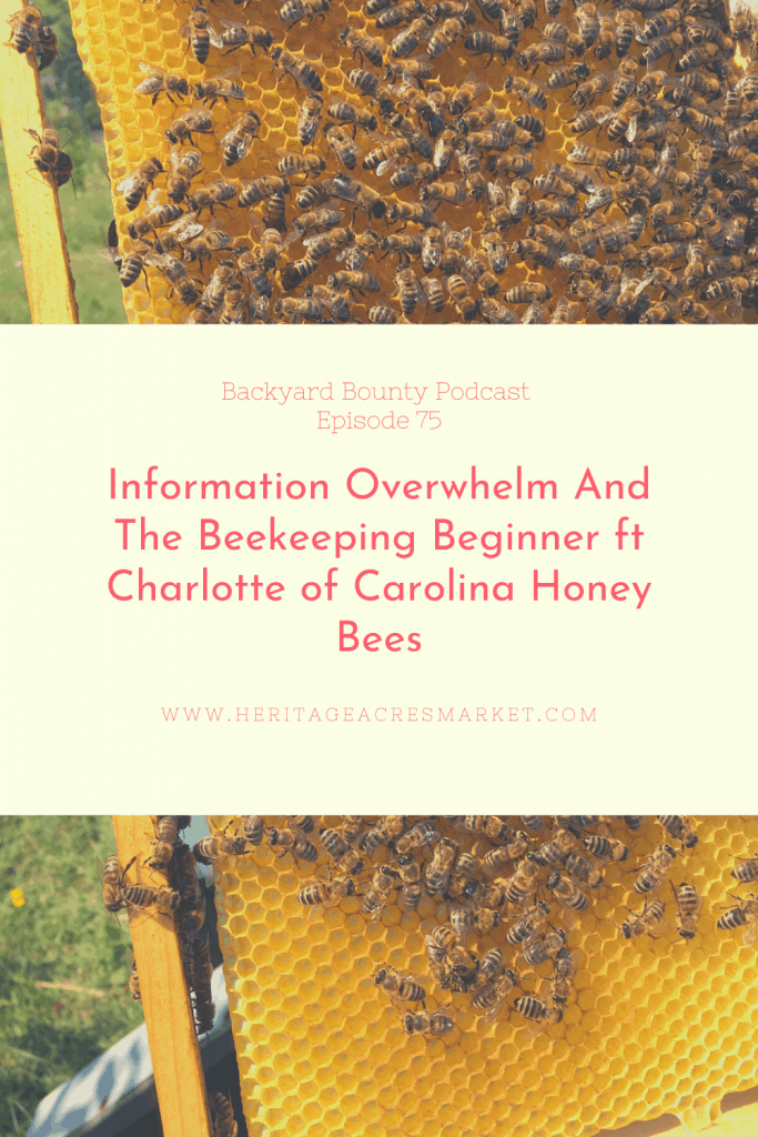 Information Overwhelm And The Beekeeping Beginner ft Charlotte of Carolina Honey Bees 1